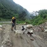 Prvi dan vožnje ekspedicije Anapurna 2014