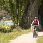 Projektuju se biciklističke i pešačka staza u Sremskoj Kamenici