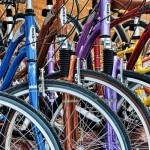 Za šest sati vožnje bicikla – 50 dinara