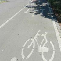 Rekonstrukcija državnog puta od Kikinde do Nakova 2020. godine – Završetak biciklističke staze do avgusta 2019.